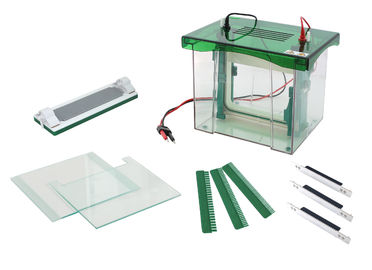 Abundant Buffer Vertical Gel Electrophoresis Equipment CE / ISO Approved